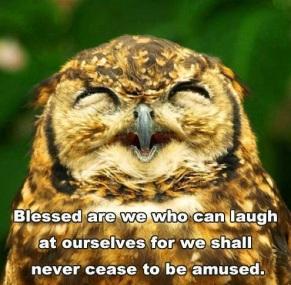 owl laugh